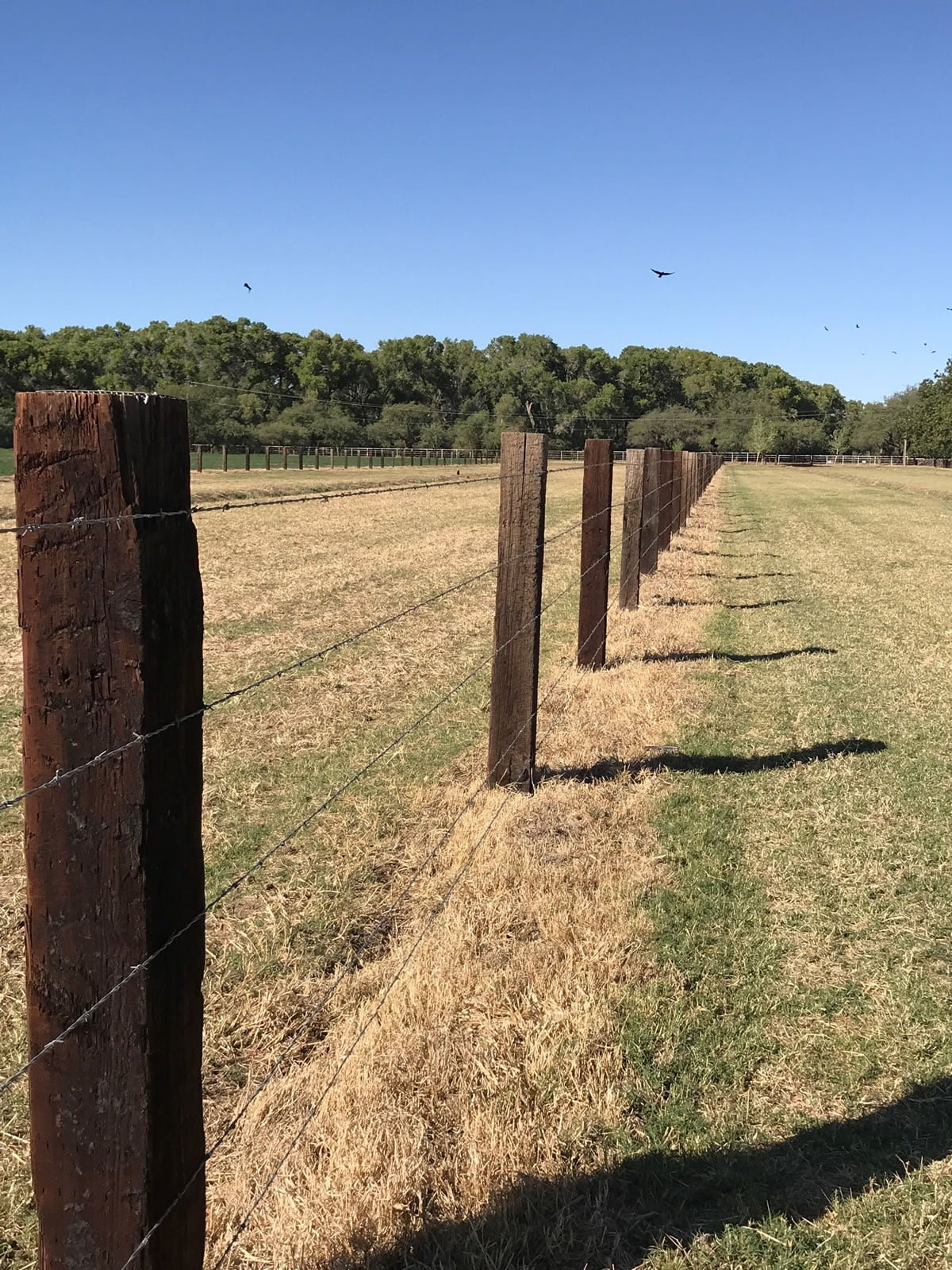 How to Build a Fence Using Railroad Ties - Nevada Railroad